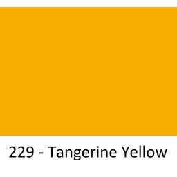 229 Tangerine Yellow.jpg