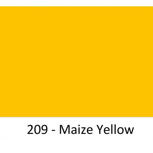 209 - Maize Yellow.jpg