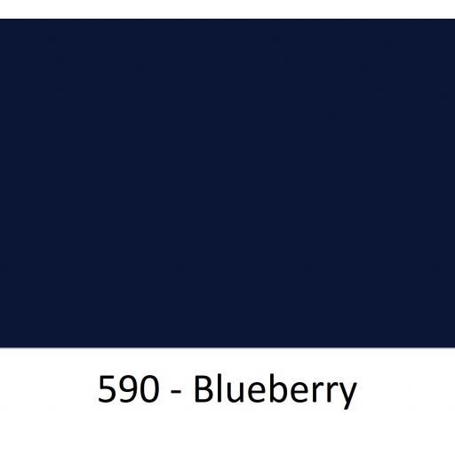 590 - Blueberry.jpg