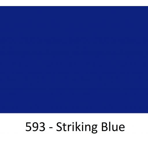 593 - Striking Blue.jpg