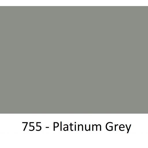 755 - Platinum Grey.jpg