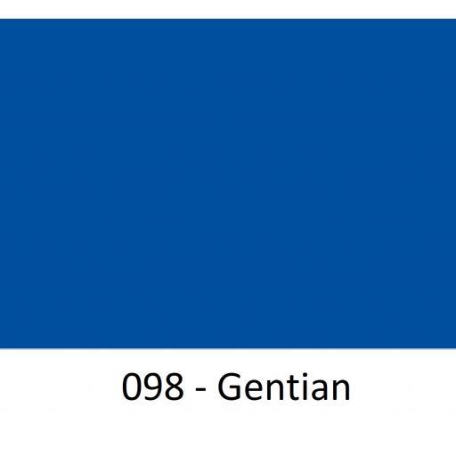 098 - Gentian.jpg
