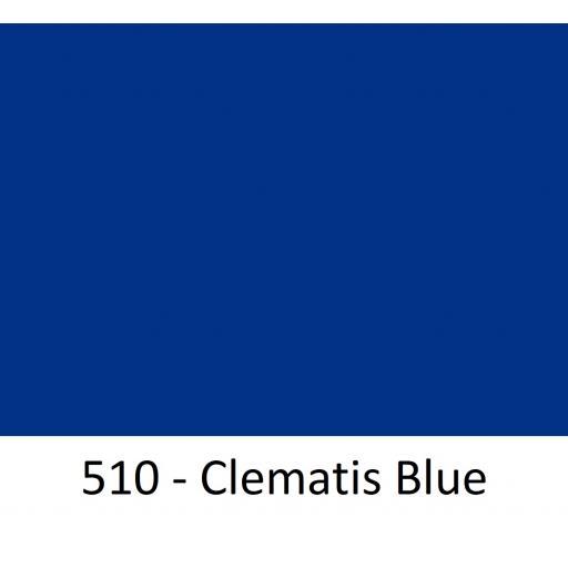 510 - Clematis Blue.jpg